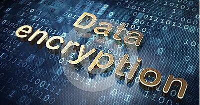 仅不到30%的公司采用数据加密